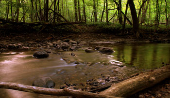 Fort Defiance stream at dusk