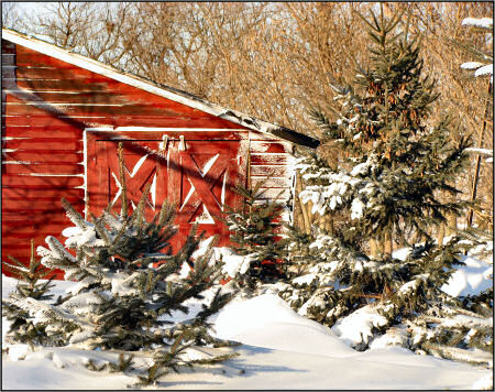 Red winter shed-photoshop