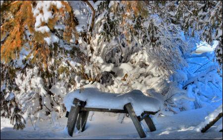 Enhc-snowy bench