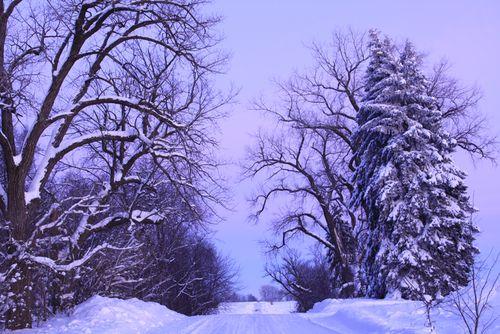850 winter evening