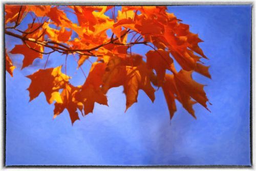 550-fall-image-from-11-fall