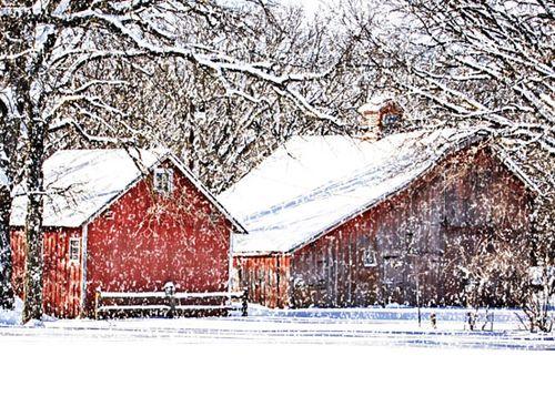 Web-550  -barns-w-snow-on1-co