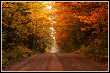 Web fall road w blk brdr copy